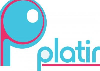 platinumsalon.net